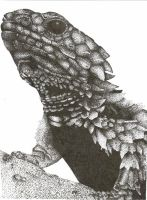Stippling Lizard by Kyzan