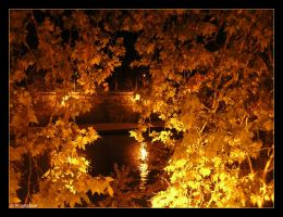 Tevere 01 by trydisegna