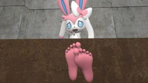 Sylveon's soles 6 (request) by hectorlongshot