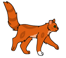 Squirrelflight Ref by VampyKit