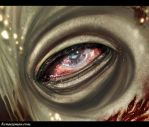 Dead Eye by KCMussman