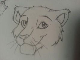 Lion/Cat doodle by Kittinlover