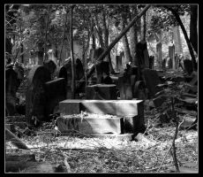 Jewish Cementary by eois
