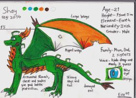 Shay Ref 2014 by Shay-Tank-Dragon-41