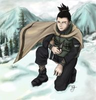 Shikamaru with winter cape by doriimu