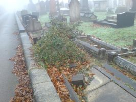 Foggy at the cemetery 9 by rudeturk