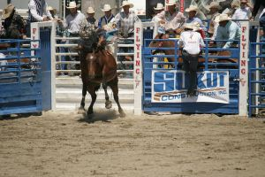 rodeo 16 by xbr0kendevotion