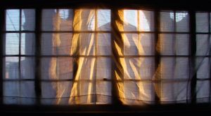 curtains by matinee