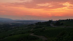 Palatinate evenings: Zell by jant-photo