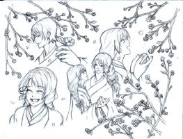cherry blossoms by darkanimegirl11