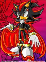 KING SHADOW THE HEDGEHOG by Agent-Shadow