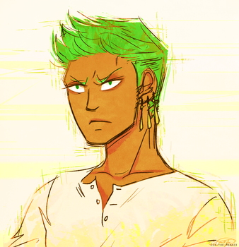 Zoro by Eek-the-Menace