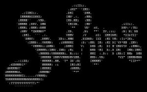 SkyLined Organic Ascii Art 1 by skylined
