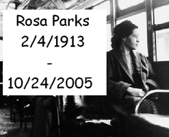 Rosa Parks Tribune by darkheart22
