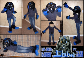 Lop-eared Rabbit Partial Fursuit- Iblue by Tsebresos