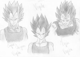 Vegeta forms by clearlytheoptimal