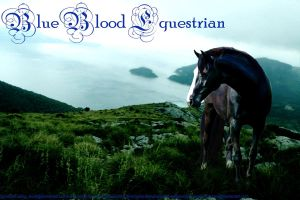 Blue Blood Equestrian Custom by Witherzane