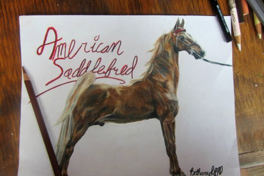 American Saddlebred by DreamingOfTheForest
