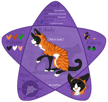 SOTS | Flameshadow | ShadowClan by BlossomFlame