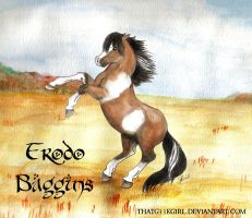 Frodo Baggins Chincoteague by thatg33kgirl