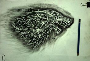 Winter is coming by hamza49