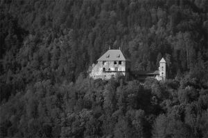 A Castle in a Forest by NorbertKocsis