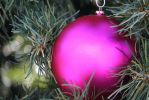 00240 - Pink Holiday Ornament by emstock