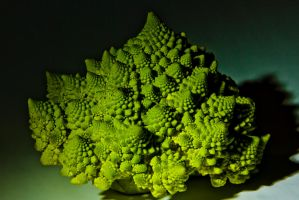 Romanesco 2 by AdamBrownPhoto