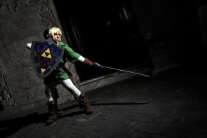 Link Zelda Cosplay by HylianCosplayItaly