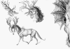 Creature sketches by LarimarDragon