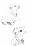 Puppy - Mechanical Pencil by Moonbei