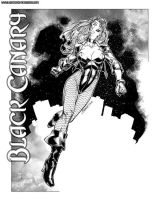 2005 Black Canary by BrandonPeterson