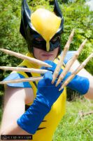 Classic Yellow Wolverine With Bone Claws by joker99xdraven