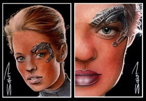Seven of Nine Sketch Cards by RandySiplon