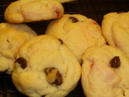 cherry and chocolate chip sugar cookies by brokenkaizer