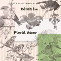Birds in floral decor by libidules