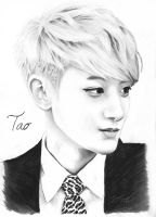 Tao .:Fan Art:. by FallThruStardust