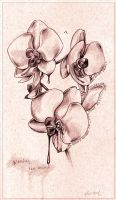 Bleeding the Orchid by -licia-