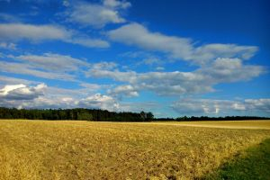 drifting clouds by Mittelfranke