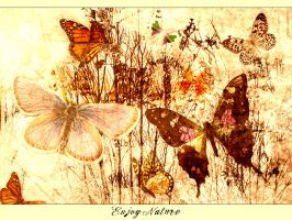 enjoynature butterflies 2 by resiux