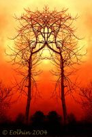 Temple Tree 2 Red 002 by Eolhin