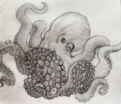 Octopus sketch by TheOneAndOnlyQueen