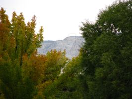 Fall Approaching GJT - Oct 20 by Qphacs