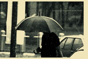 ::UMbRELLA:: by mohdfikree