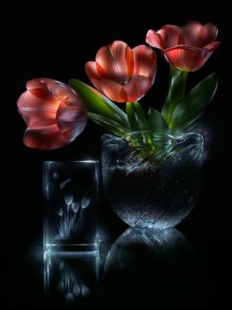 Tulips (lightpainting) by ChaoticMind75