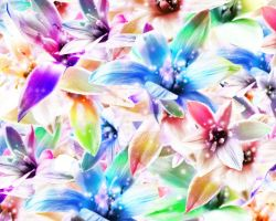Orchids-2 by KF53