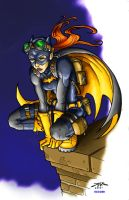 BatgirlColors by TheRigger