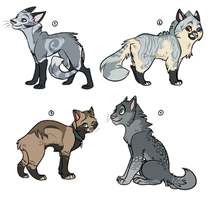 Cat adoptables 1 | CLOSED by DaisiesAdopts