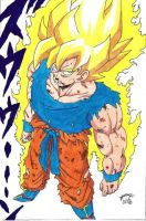 Dragonball Z - Goku Super Sayan to Namek Colour by TriiGuN