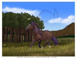Magic Meadow by Equinus